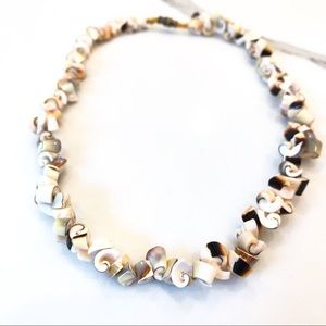 Vtg Curly Luhuanus Shell Necklace